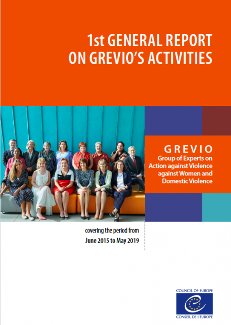 GREVIO, premier rapport, activités générales